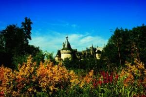 Charmont Sur Loire #1